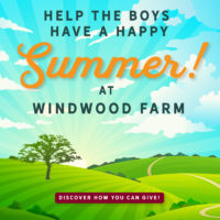 Help the boys have a happy Summer at Windwood Farm